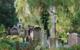Auf einem Friedhof in Bayreuth wurde randaliert. Foto: pixabay