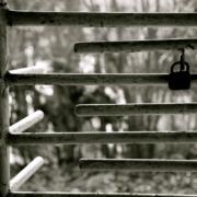Schwerer Diebstahl, kleine Beute: 14-Jähriger steigt in Hofer Freibad ein. Symbolfoto: pixabay