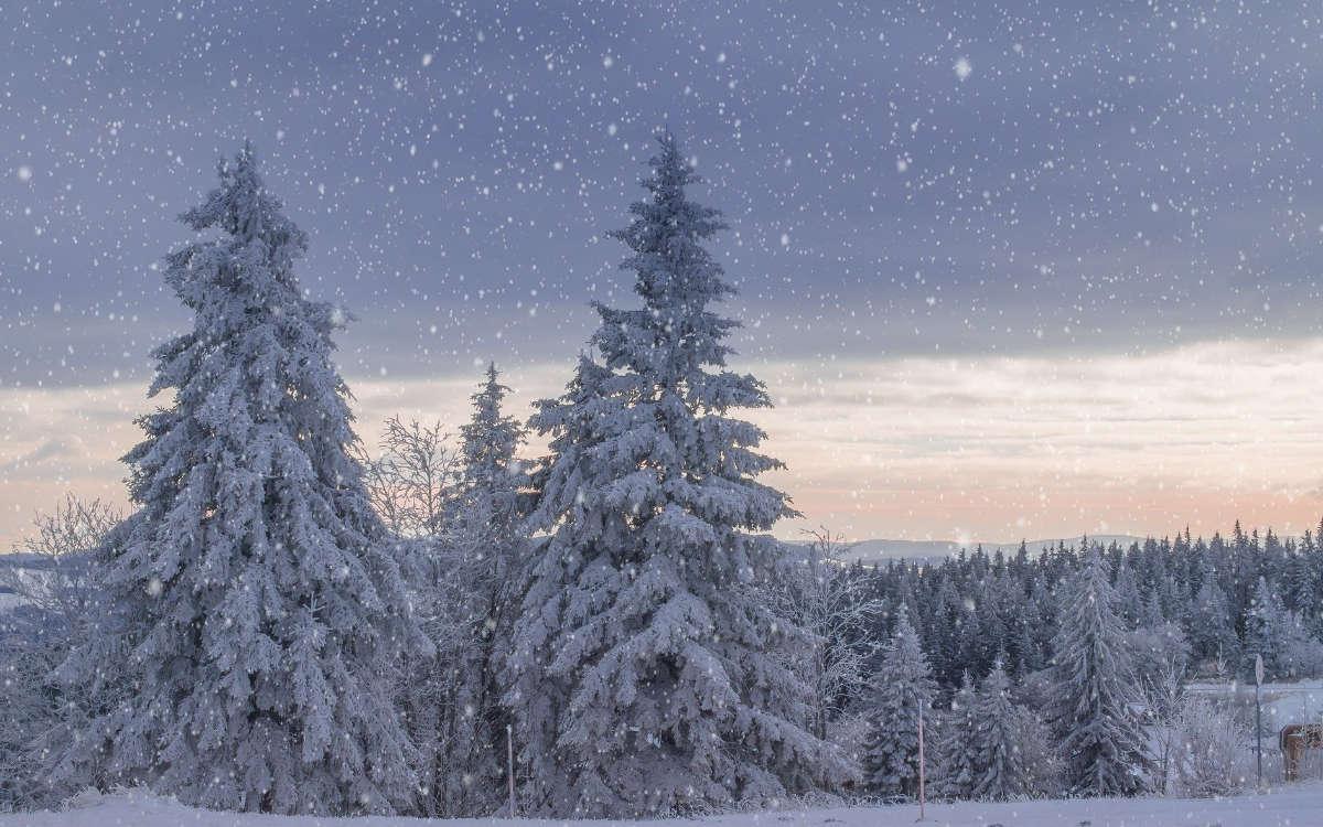 Eine verschneite Winterlandschaft. Foto: pixabay