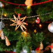 Weihnachten ist vorbei und der Baum schaut lange nicht mehr so gut aus, wie auf dem Foto. Deswegen stellt sich so langsam folgende Frage: Wohin mit dem ausgedienten Christbaum? Foto: Pexels