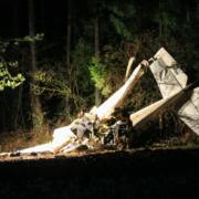 Ein Kleinflugzeug ist bei Pegnitz abgestürzt. Der Pilot konnte nur noch tot geborgen werden. Foto: News5/Holzheimer