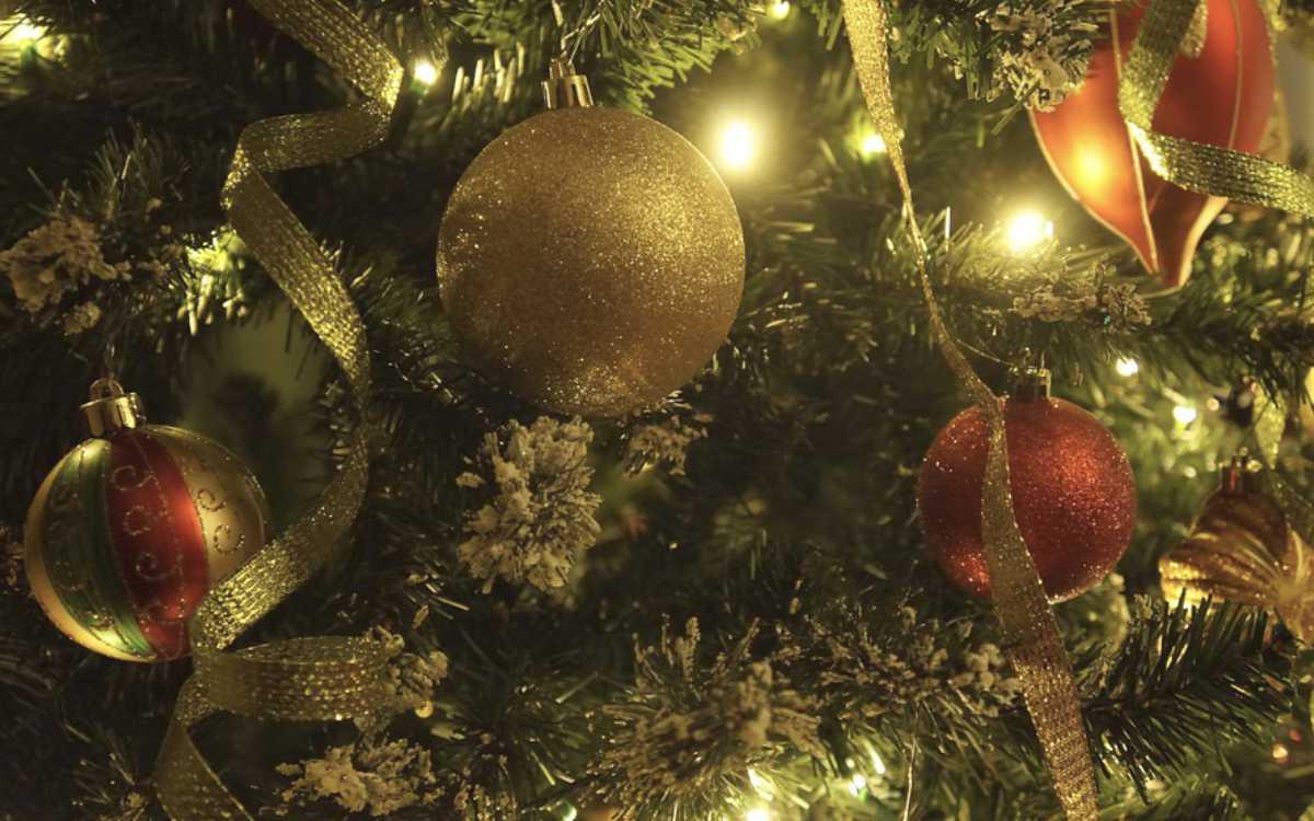 In Bayreuth wurde ein Weihnachtsbaum gestohlen: Er stand vor einem Altenheim. Symbolfoto: Pixabay