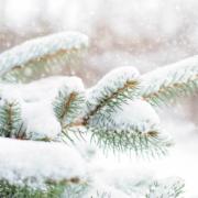 In Bayreuth soll es am heutigen Samstag wieder schneien. Symbolfoto: Pixabay