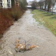 Warnung vor Hochwasser in Bayreuth aufgehoben: So sah die Mistel (genannt Mistelbach) in Bayreuth am Freitagvormittag aus. Foto: Redaktion