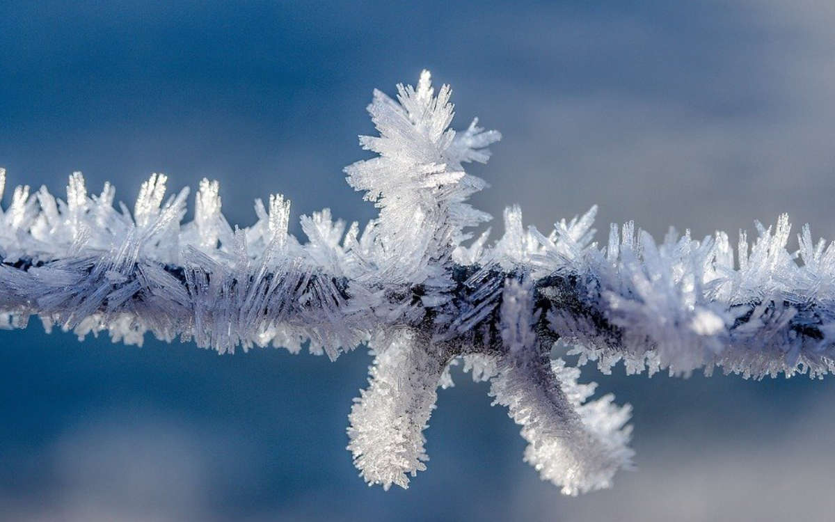Frost in Bayreuth. Symbolfoto: Pixabay