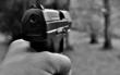In Hof mussten zwei Polizisten ihre Schusswaffen ziehen. Symbolfoto: Pixabay