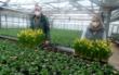 Gärtner sind mit der Corona-Politik der Regierung nicht einverstanden. Sie wollen wieder aufsperren. Foto: Thomas Weichert