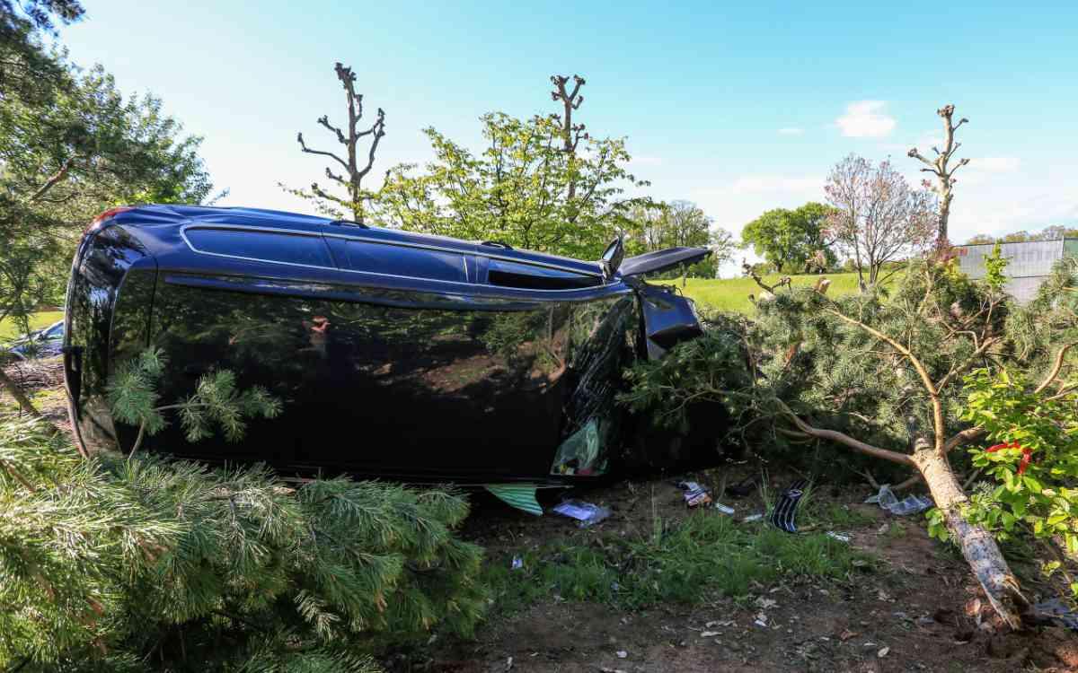 Ein Auto kracht im Landkreis Forchheim in eine Baumschule. Bild: NEWS 5/Merzbach