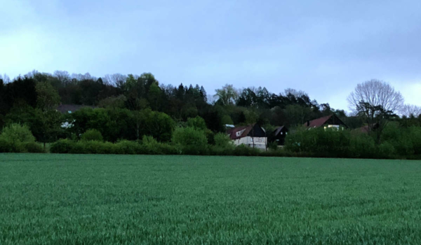 Weiterhin grüne Wiese statt Photovoltaik: Der Blick auf den Bindlacher Ortsteil Röhrig von der Autobahnunterquerung bei Eckershof. Bild: Jürgen Lenkeit