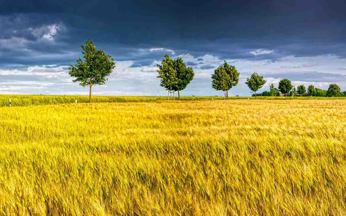 Der Deutsche Wetterdienst warnt am Montag, den 18. August 2021, vor Windböen in Bayreuth. Symbolbild: Pixabay
