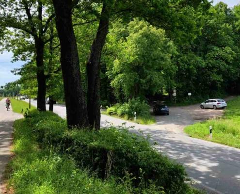 Auch der Studentenwald an der Tiergärtner Straße ist Teil von Bayreuths lebendigem Süden. In ihm sollen ein Bürgerhain und neue Teiche entstehen. Bild: Jürgen Lenkeit