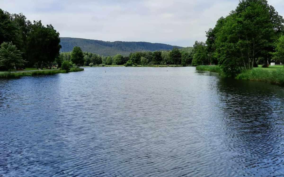 Der See in Trebgast gehört zu den beliebten Badeseen bei Bayreuth. Bild: Jürgen Lenkeit