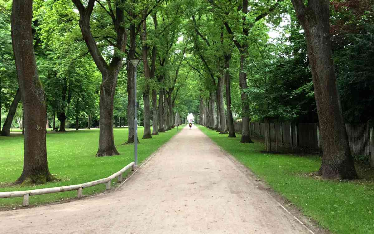 Der Hofgarten in Bayreuth: Tagsüber teilweise ganz anders als in der Nacht. Bild: Jürgen Lenkeit