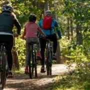 Der Fahrradbus Fränkische Schweiz verbindet touristische Ziele für Aktive in den Landkreisen Bayreuth, Kulmbach und Forchheim. Symbolbild: Pixabay