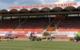Im Hans-Walter-Wild-Stadion in Bayreuth wird ein neuer Rollrasen verlegt. Bild: Jürgen Lenkeit