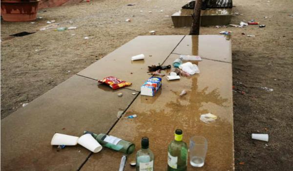So soll die Wilhelminenaue am Ende der geplanten Müllsammelaktion nicht mehr aussehen. Archivfoto: privat
