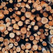Lieferketten geraten ins Stocken, Kurzarbeit ist die Konsequenz. Besonders Holz ist global derzeit ebenso knapp wie begehrt. Symbolbild: Pixabay