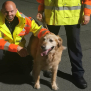 Auf der A9 bei Plech haben Bayreuther Polizisten einen Hund gefunden. Foto: Polizei