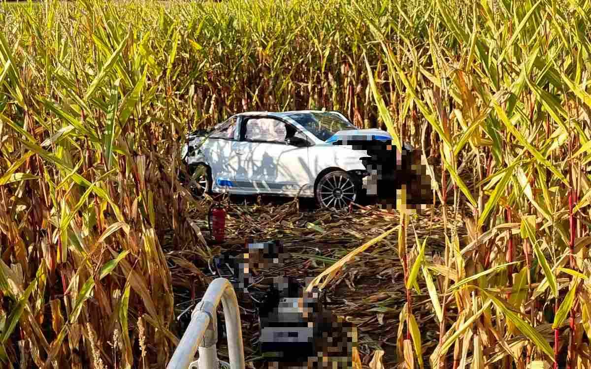 Ein 71-jähriger Mann hat bei Burgoberbach (Lkr. Ansbach) die Kontrolle über sein Auto verloren und ist in einem Maisfeld gestorben. Bild: News5/Haag
