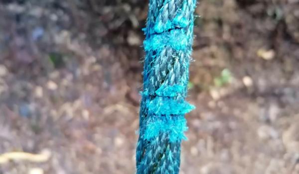 Vandalismus am Waldlehrpfad: An der Waldhütte bei Eckersdorf sägten Unbekannte Seile eines Klettergerüstes an. Bild: Bayerische Staatsforsten